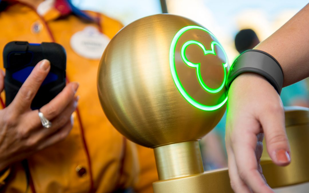It's a Small World After All: Disney Knows Everything About Visitor Behaviour